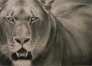 "Amy Bickford ~ ""Lioness"" ~ Watercolor Pencil on Paper 10"" x 14"""
