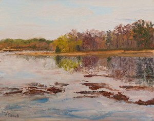 "Felicity Sidwell ~ ""Spring Reflections"" ~ Oil on Canvas 11"" x 14"""