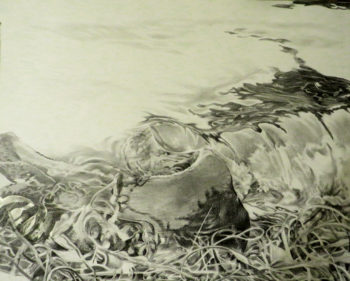 "Patricia Chandler ~ ""Edge of the Tide"" ~ Graphite on Paper 18.5"" x 23"""